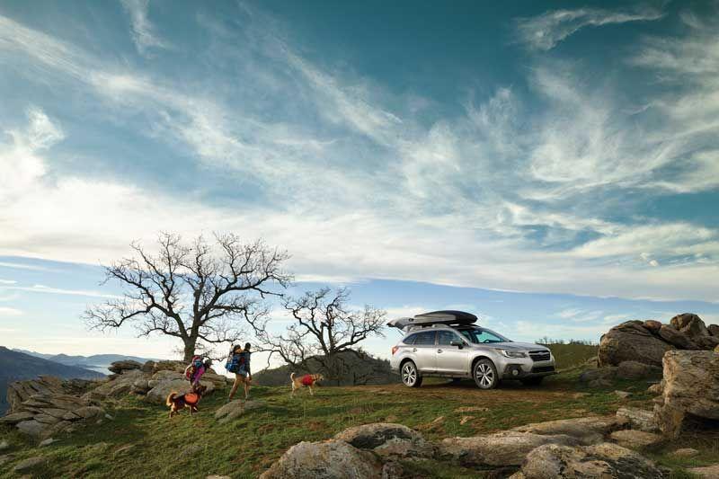 Subaru outback thumb